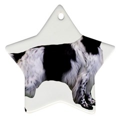 English Setter Full Ornament (Star)