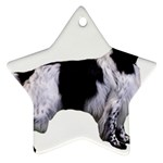 English Setter Full Ornament (Star)  Front
