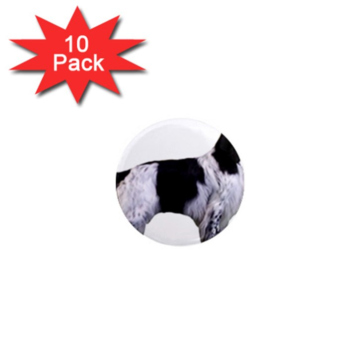 English Setter Full 1  Mini Magnet (10 pack)