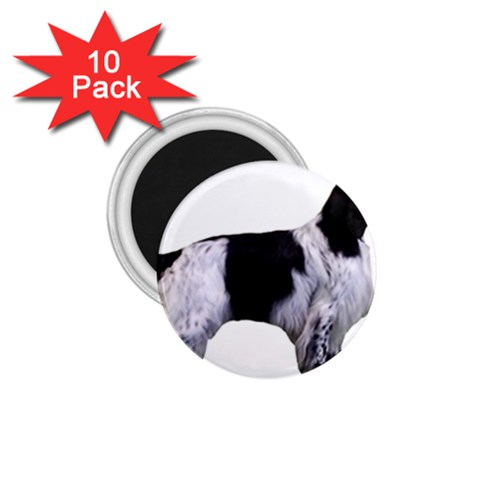 English Setter Full 1.75  Magnets (10 pack)