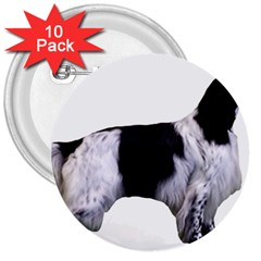 English Setter Full 3  Buttons (10 pack)