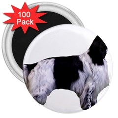 English Setter Full 3  Magnets (100 pack)