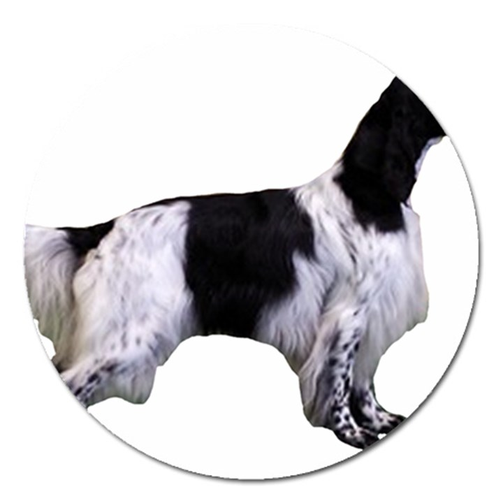 English Setter Full Magnet 5  (Round)