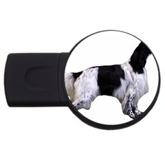 English Setter Full USB Flash Drive Round (2 GB)