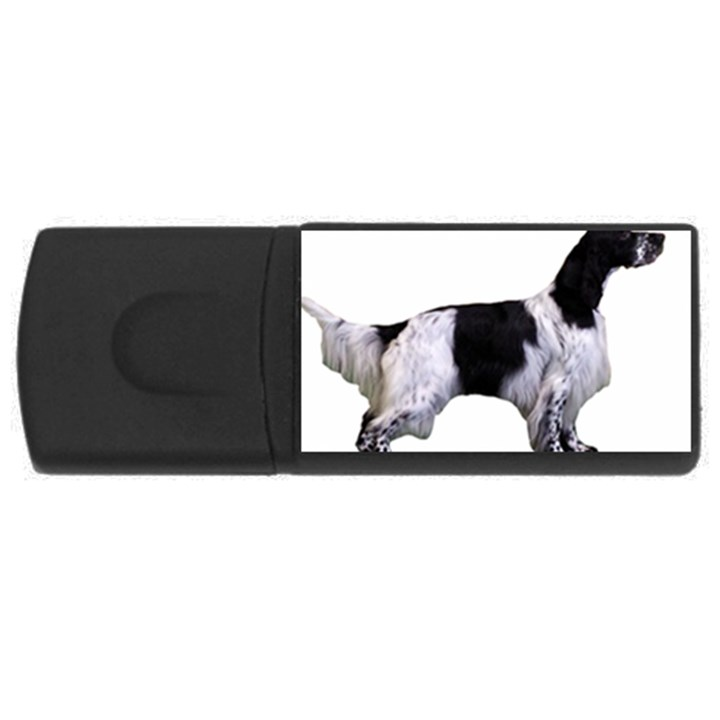 English Setter Full USB Flash Drive Rectangular (2 GB)