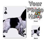 English Setter Full Playing Cards 54 Designs  Front - Club3