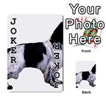 English Setter Full Playing Cards 54 Designs  Front - Joker1