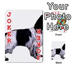 English Setter Full Playing Cards 54 Designs  Front - Joker2