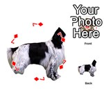 English Setter Full Playing Cards 54 (Round)  Front - Diamond7