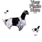 English Setter Full Playing Cards 54 (Heart)  Front - Club5