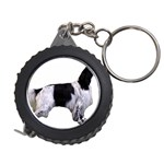 English Setter Full Measuring Tapes Front