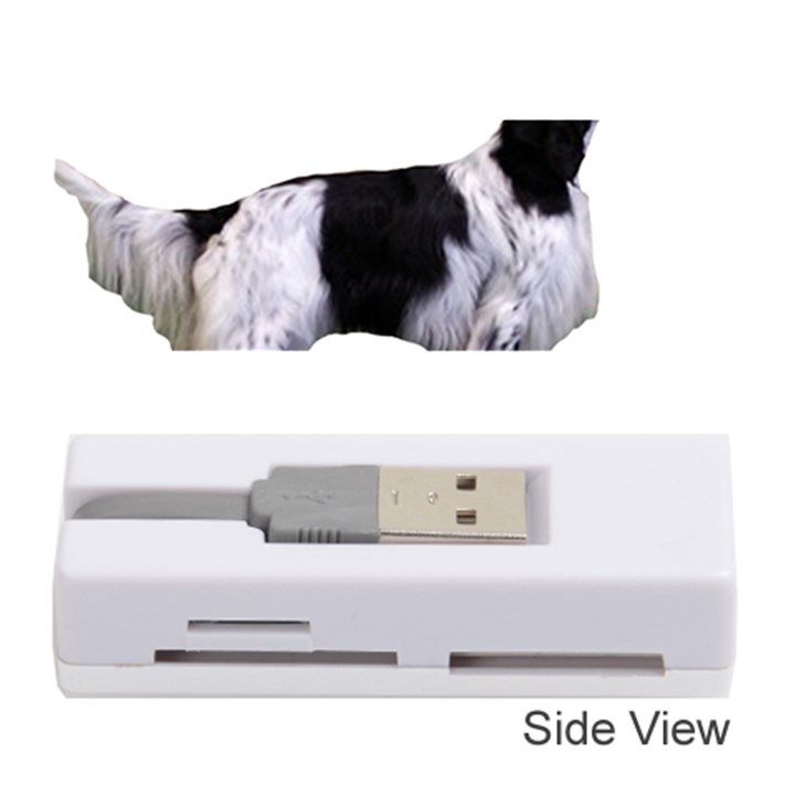 English Setter Full Memory Card Reader (Stick)