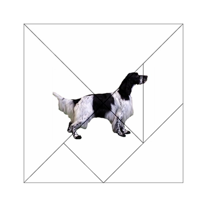 English Setter Full Acrylic Tangram Puzzle (6  x 6 )