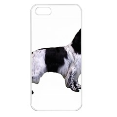 English Setter Full Apple iPhone 5 Seamless Case (White)