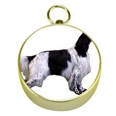 English Setter Full Gold Compasses