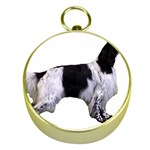 English Setter Full Gold Compasses Front