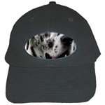 Great Dane harlequin  Black Cap Front