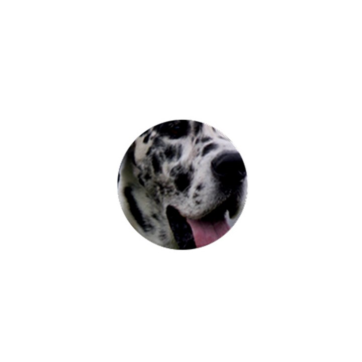 Great Dane harlequin  1  Mini Buttons