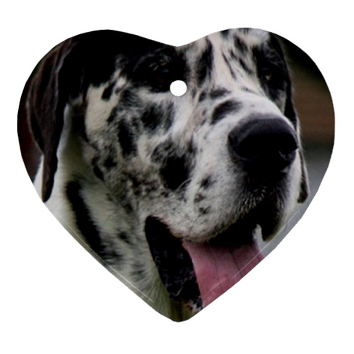 Great Dane harlequin  Ornament (Heart)