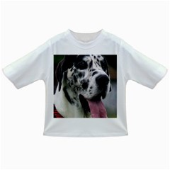 Great Dane harlequin  Infant/Toddler T-Shirts