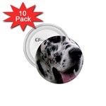 Great Dane harlequin  1.75  Buttons (10 pack) Front