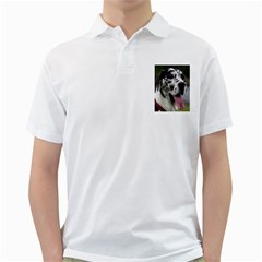 Great Dane harlequin  Golf Shirts