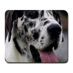 Great Dane harlequin  Large Mousepads