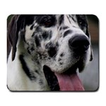 Great Dane harlequin  Large Mousepads Front