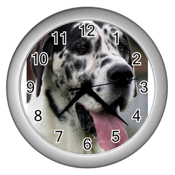 Great Dane harlequin  Wall Clocks (Silver)