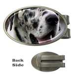 Great Dane harlequin  Money Clips (Oval)  Front