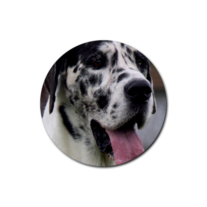 Great Dane harlequin  Rubber Coaster (Round)