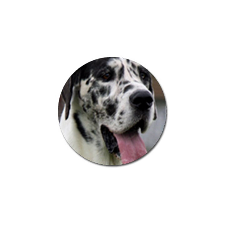 Great Dane harlequin  Golf Ball Marker (10 pack)