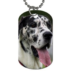 Great Dane harlequin  Dog Tag (Two Sides)