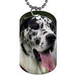 Great Dane harlequin  Dog Tag (Two Sides) Back