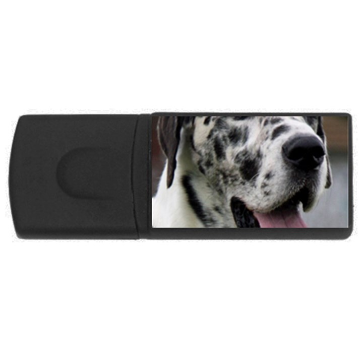 Great Dane harlequin  USB Flash Drive Rectangular (2 GB)