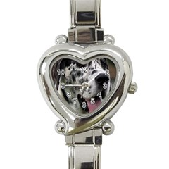 Great Dane harlequin  Heart Italian Charm Watch