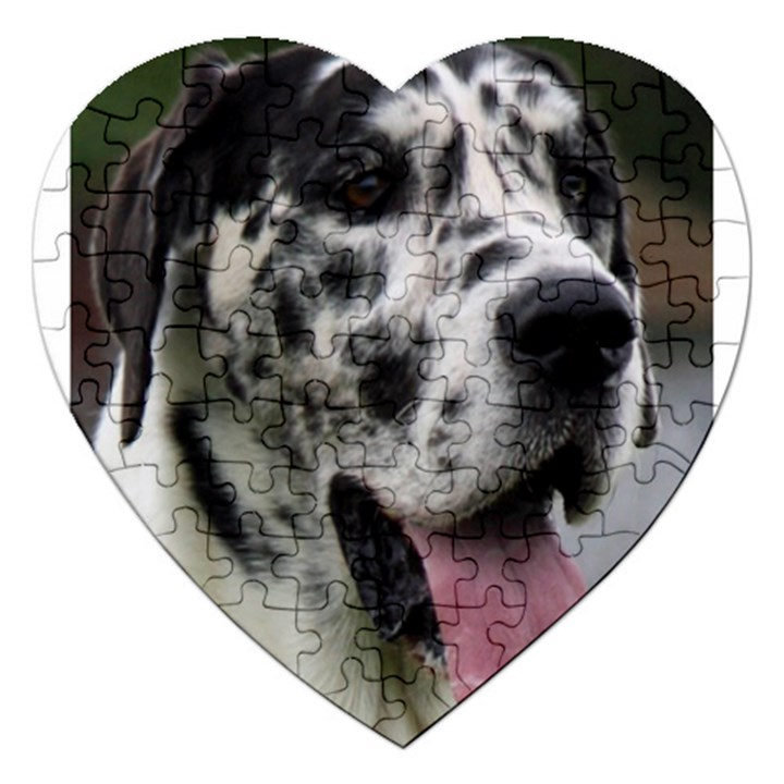 Great Dane harlequin  Jigsaw Puzzle (Heart)