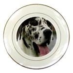 Great Dane harlequin  Porcelain Plates Front