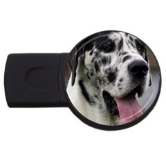 Great Dane harlequin  USB Flash Drive Round (4 GB)