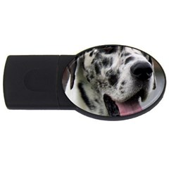 Great Dane harlequin  USB Flash Drive Oval (4 GB)