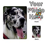 Great Dane harlequin  Playing Cards 54 Designs  Front - Spade5