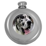 Great Dane harlequin  Round Hip Flask (5 oz) Front