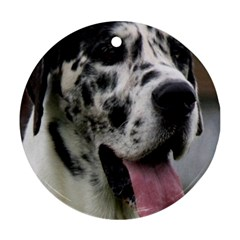 Great Dane harlequin  Round Ornament (Two Sides)