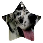 Great Dane harlequin  Star Ornament (Two Sides)  Front