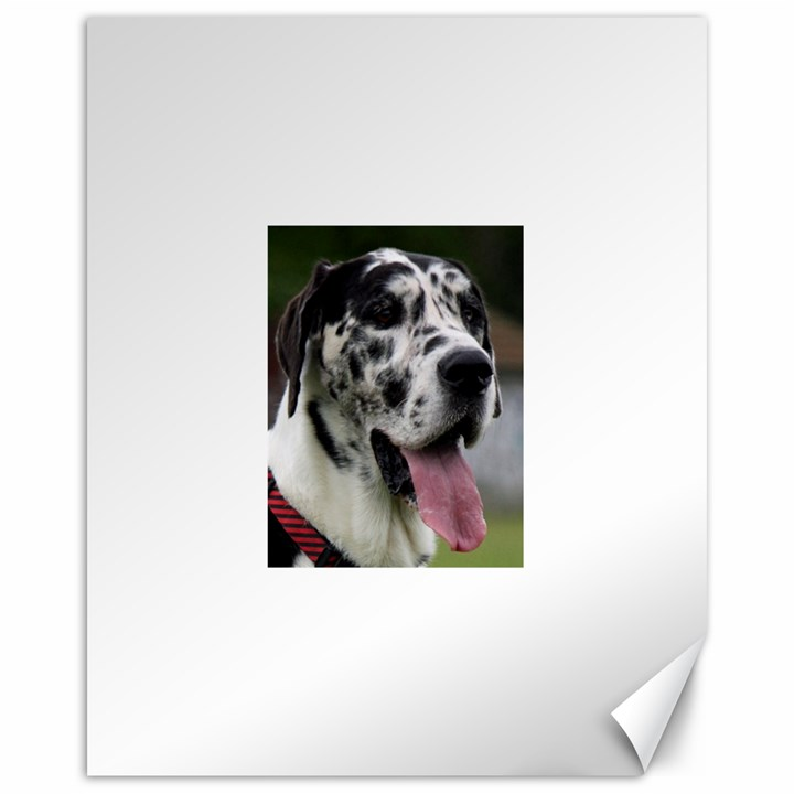 Great Dane harlequin  Canvas 16  x 20