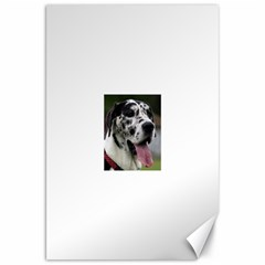 Great Dane harlequin  Canvas 20  x 30