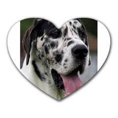 Great Dane harlequin  Heart Mousepads