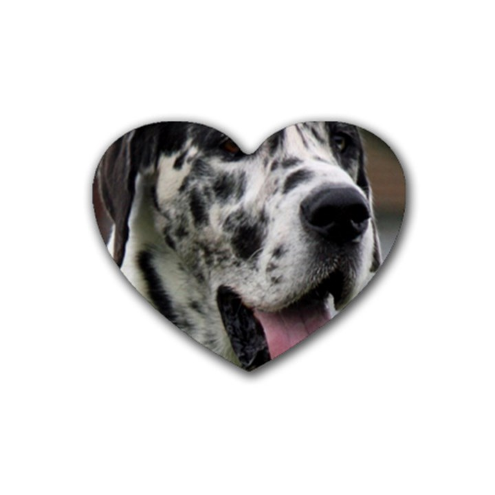 Great Dane harlequin  Rubber Coaster (Heart)