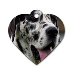 Great Dane harlequin  Dog Tag Heart (Two Sides) Front