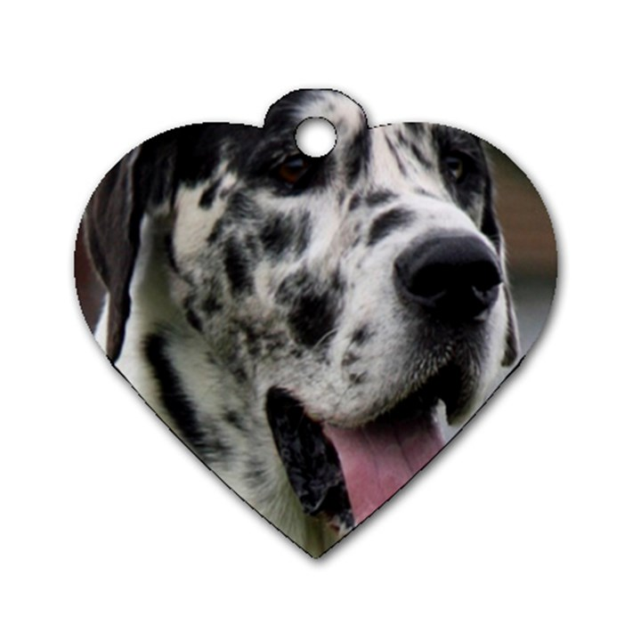 Great Dane harlequin  Dog Tag Heart (Two Sides)